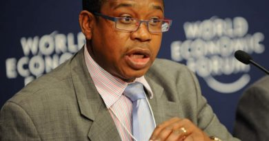 'It will be suicidal,' Mthuli Ncube rules out adopting US dollar as sole currency